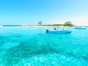 things to do in bimini